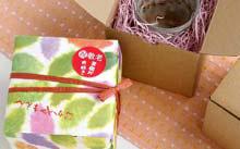 秋桜湯呑み
