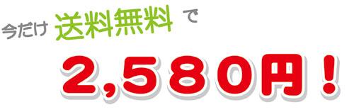 今だけ送料無料で2580円!